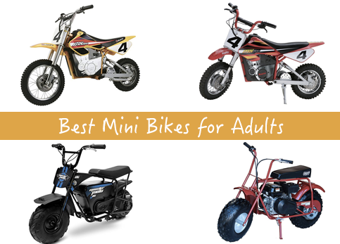Best Mini Bikes for Adults